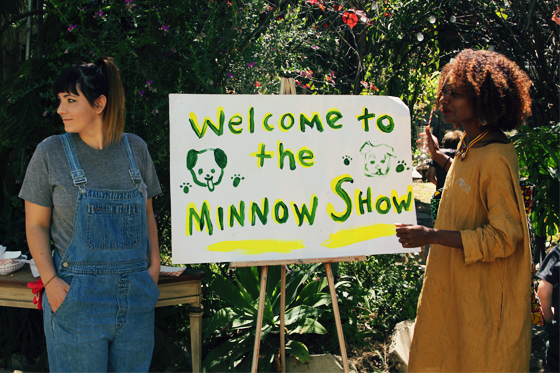 Welcome to the Minnow Show